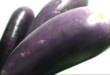 Still frame from: VJ Clips of Eggplants - by Carrie Gates