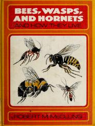 Cover of: Bees, wasps, and hornets, and how they live. | Robert M. McClung